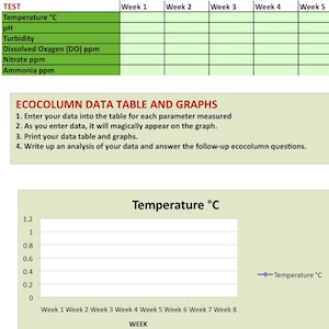Ecocolumn Data Analysis