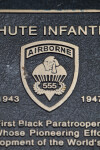 555th Airborne Insignia