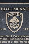 555th Airborne Insignia