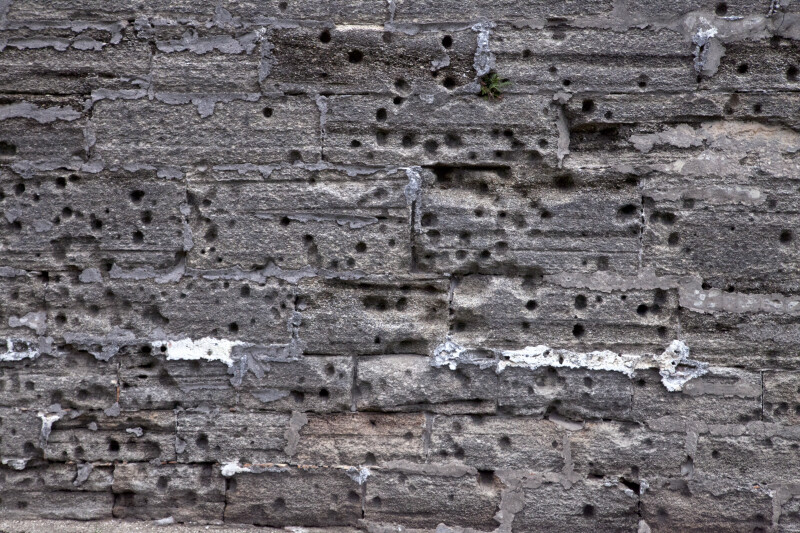 A Cannon-Damaged Coquina Wall