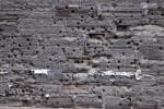 A Cannon-Damaged Coquina Wall