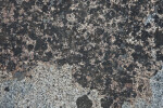 A Close-Up of Granite