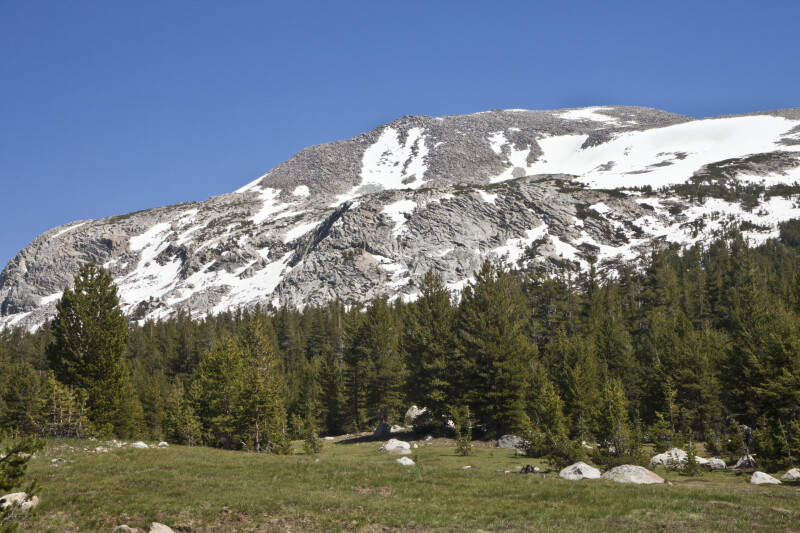 A Closer View of a Mammoth Peak with Pine Trees around the Base