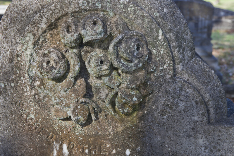 A Closer-View of Roses on a Headstone