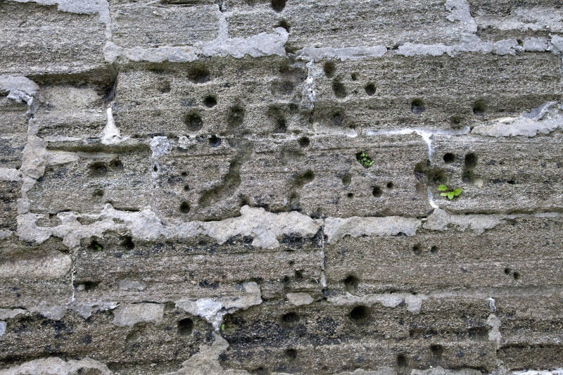 A Coquina Wall with Cannon Damage