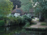 A Cottage in Norwich