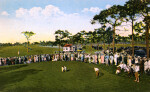 A Crowd Watches a Close Golf Match at Pasadena Golf Course in St. Petersburg, Florida