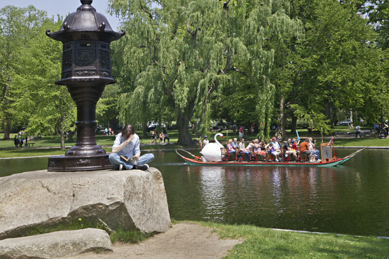 A Day in May at the Boston Public Garden