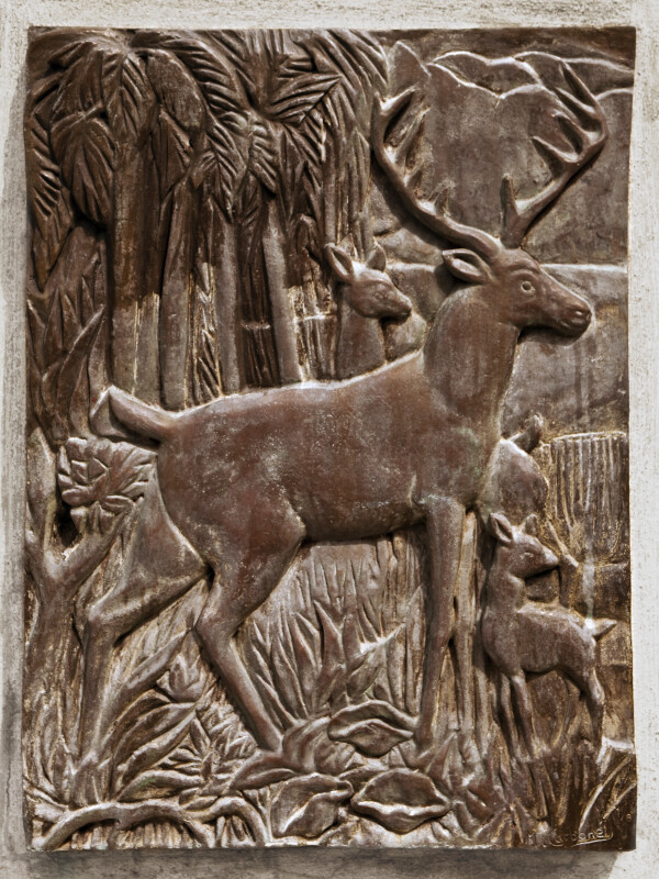 A Deer in Bronze