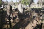 A Fenced Plot for the Whitner Family