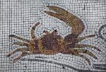 A Fiddler Crab in a Mosaic