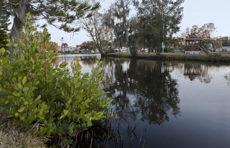 A Gazebo near a Pond