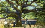 A Giant Oak Tree