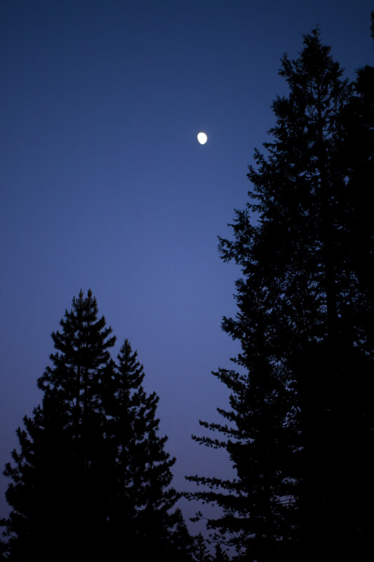 A Gibbous Moon over Yosemite National Park