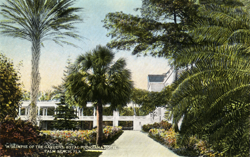 A Glimpse of the Gardens at the Royal Poinciana Hotel