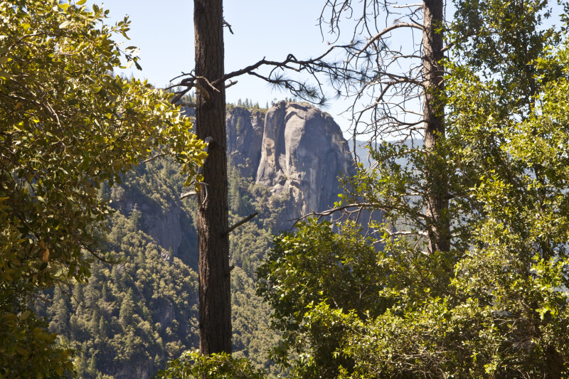A Granite Cliff near Yosemite Valley