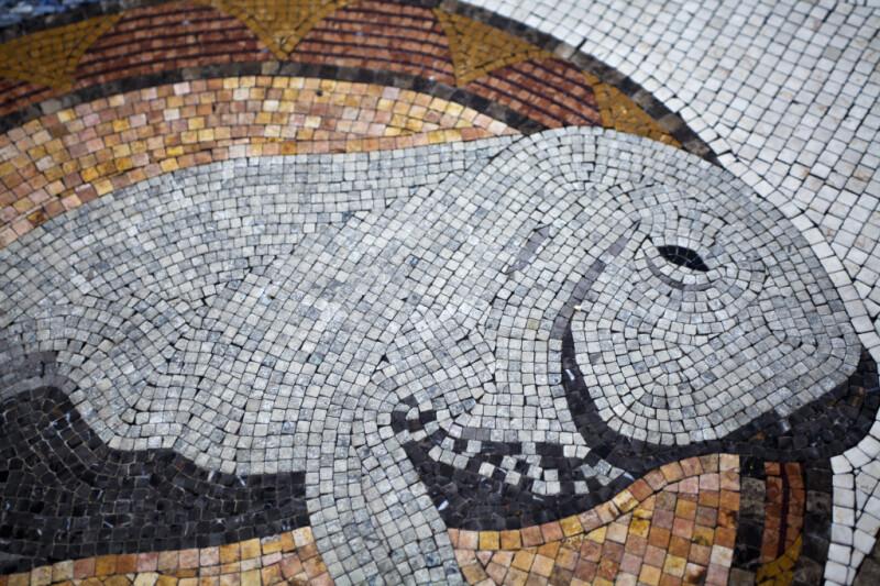 A Manatee in a Mosaic