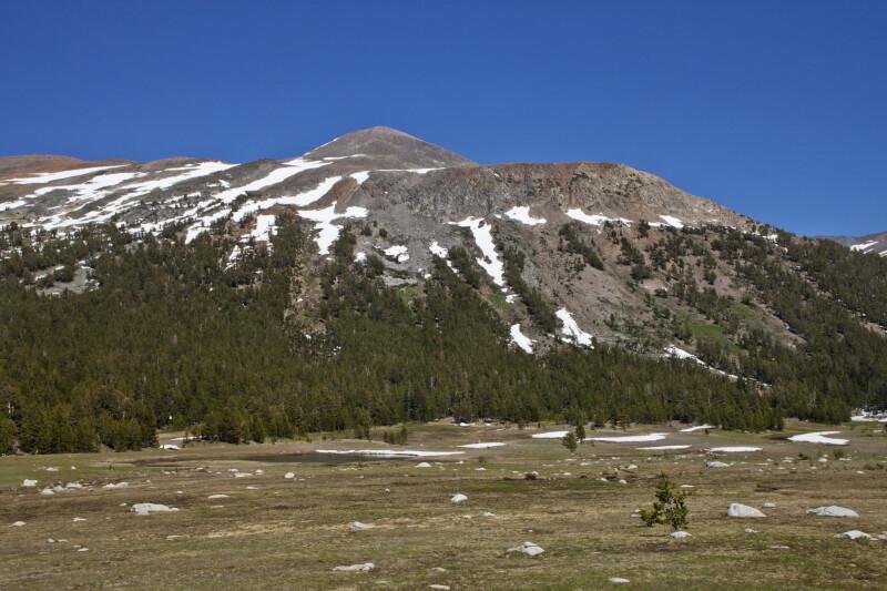 A Meadow near Mount Dana