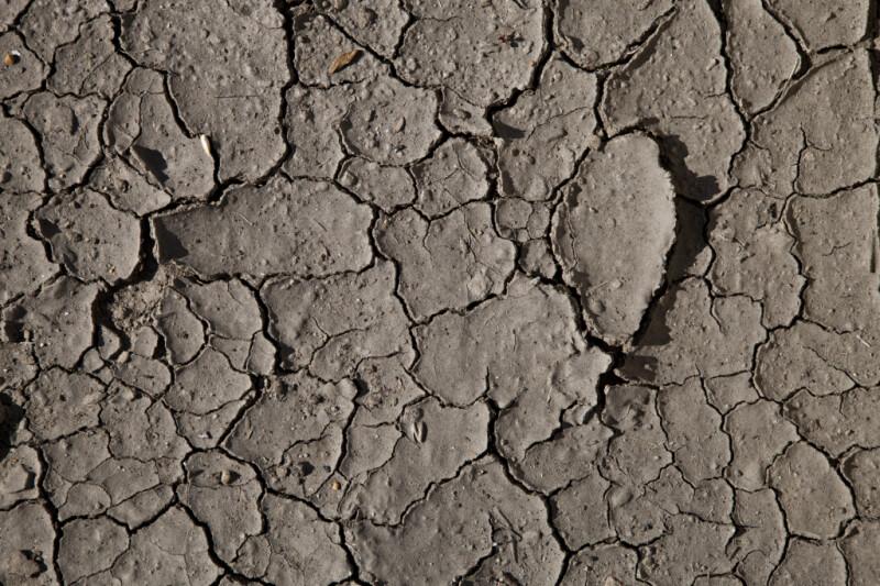 A Mud Flat Texture
