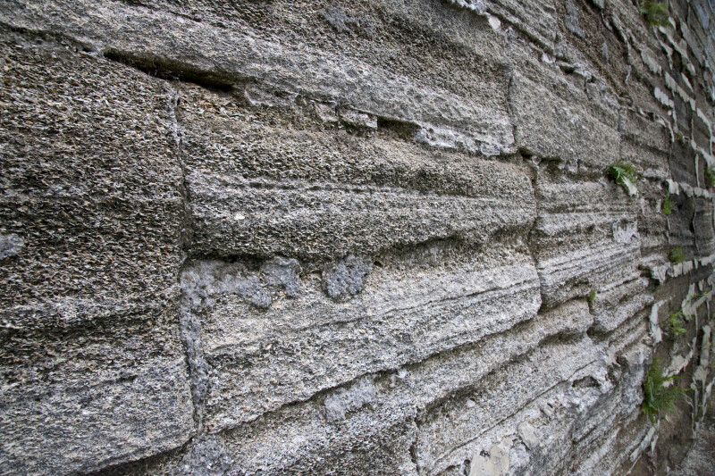 A Oblique View of a Coquina Wall