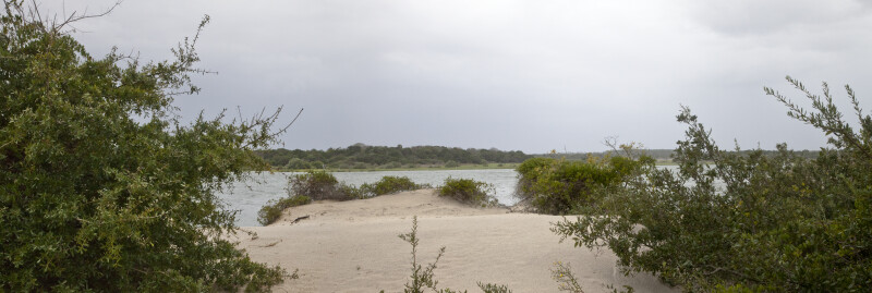 A Patch of Sand near Fort Matanzas