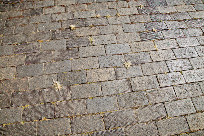 A Pavement with Decorative Bricks