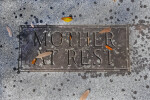 A Plaque on a Ground Ledger for Mother