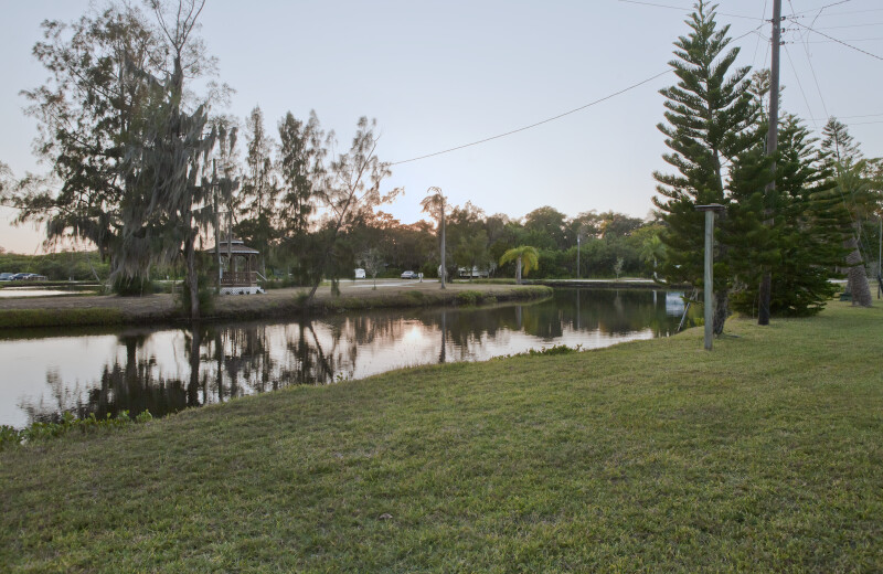 A Pond in the Braden Castle Neighborhood