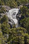 A Rough-Channeled Waterfall on Cascade Creek