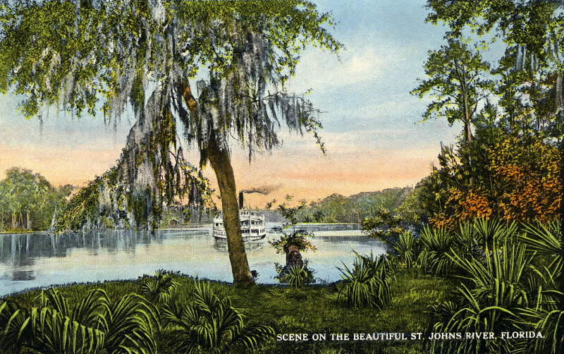 A Scene on the Beautiful St. Johns River
