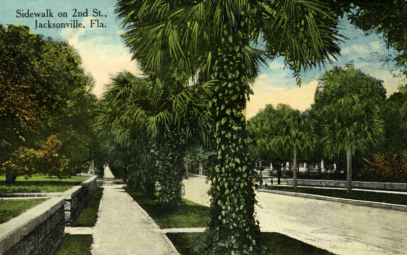 A Sidewalk on Second Street, Jacksonville, Florida