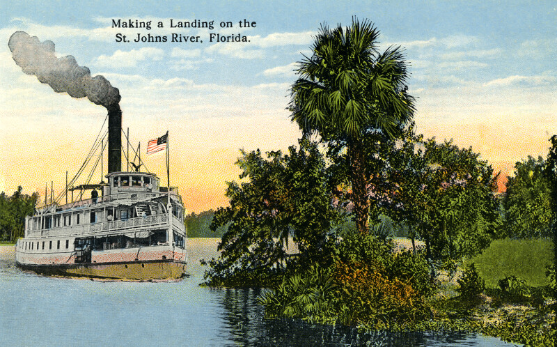A Steamship Making a Landing on the St. Johns River