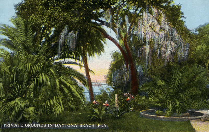 A View from Some Private Grounds in Daytona Beach, Florida