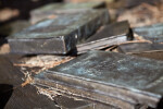 A View of Bronze Books Scattered over Leaf Litter