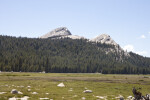 A View of Fairview Dome over the Meadow