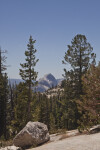 A View of Half Dome through the Trees