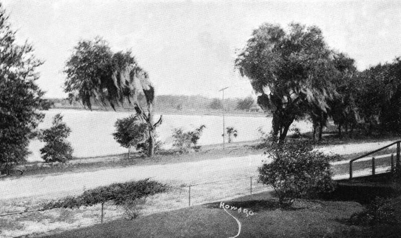 A View of Lake Eola