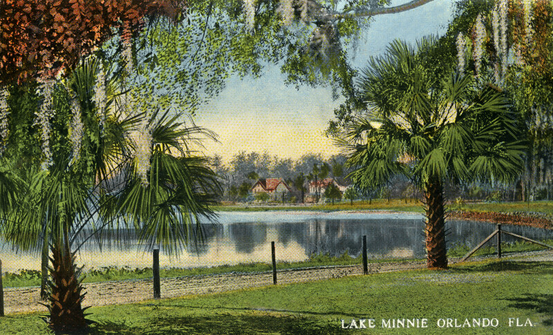 A View of Lake Minnie