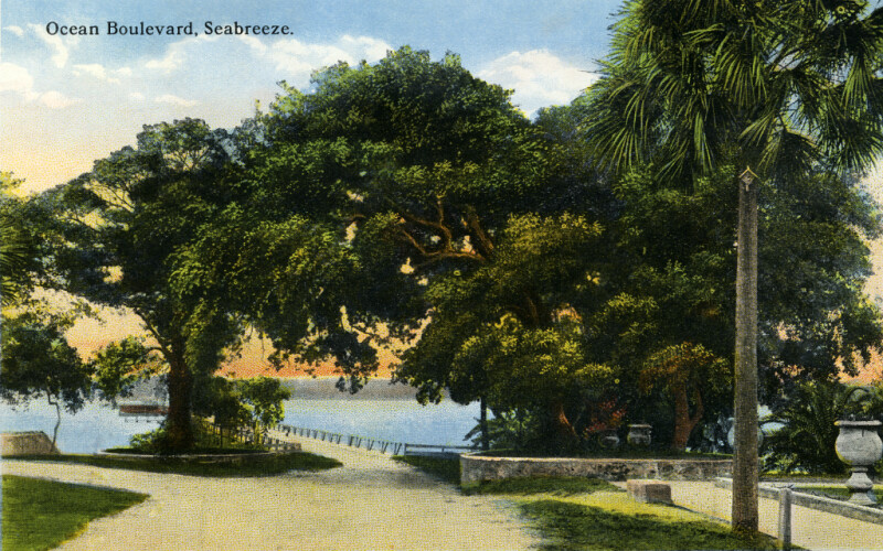 A View of Ocean Boulevard in Seabreeze