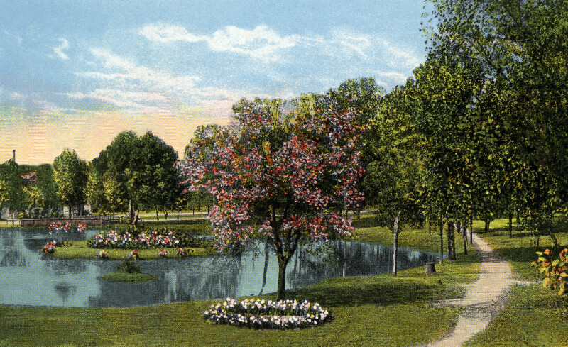 A View of Springfield Park