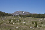 A View of Tioga Peak