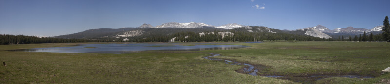 A View of Tuolumne Meadows