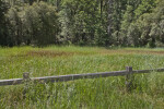 A Wood Fence in a Grassy Field
