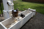 A Wooden Bucket over a Trough