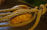A Wooden Pulley with Cordage