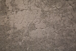 Adobe Texture of the Alvino House