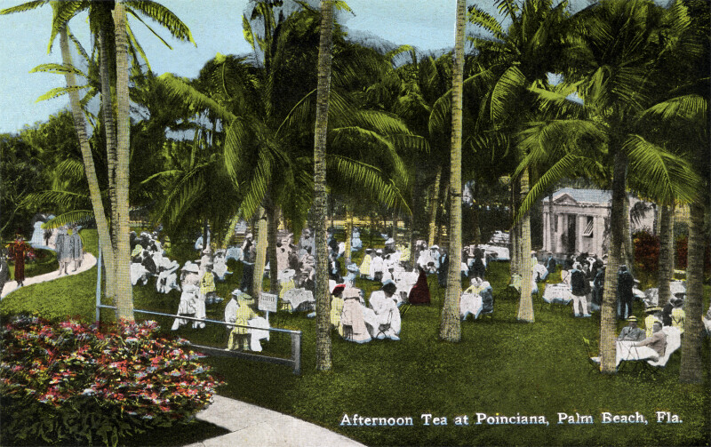 Afternoon Tea at Poinciana