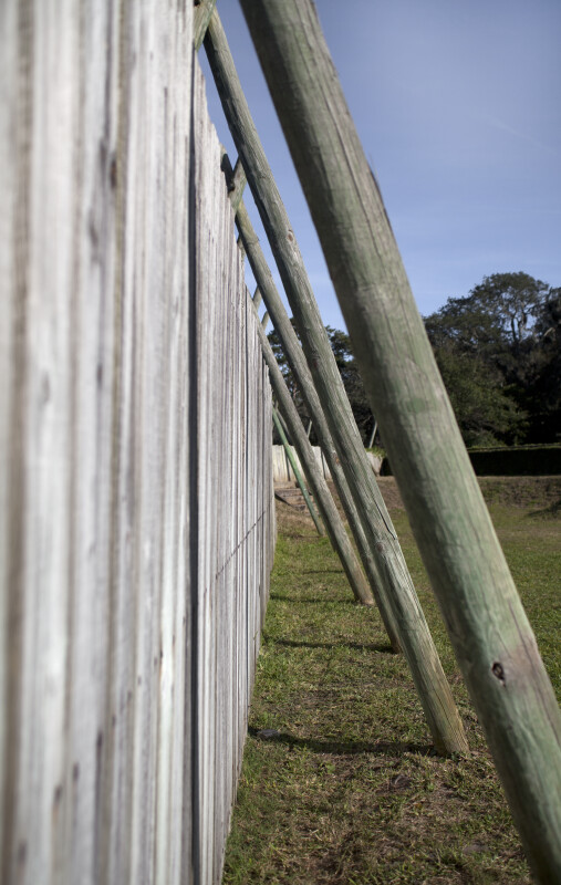 Along a Wooden Fence at Fort Caroline's Reconstruction Site