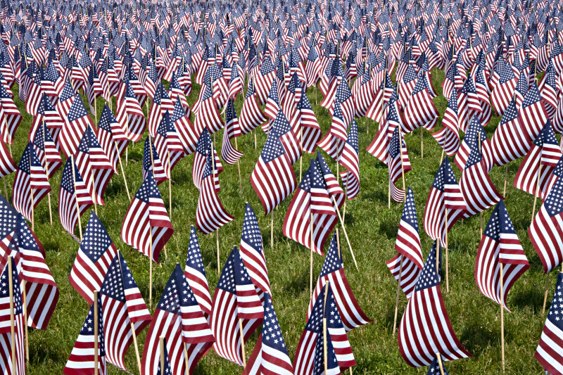 American Flags Representing Fallen Massachusetts Soldiers