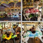 Amusement Park Rides photographs